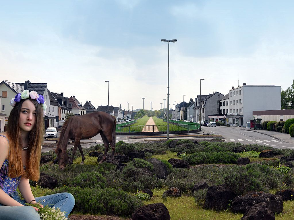 pferd2-3040