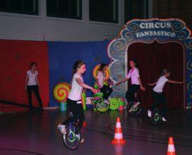 2016-wintershow-circus